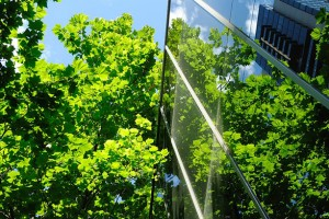 glass office building with trees background
